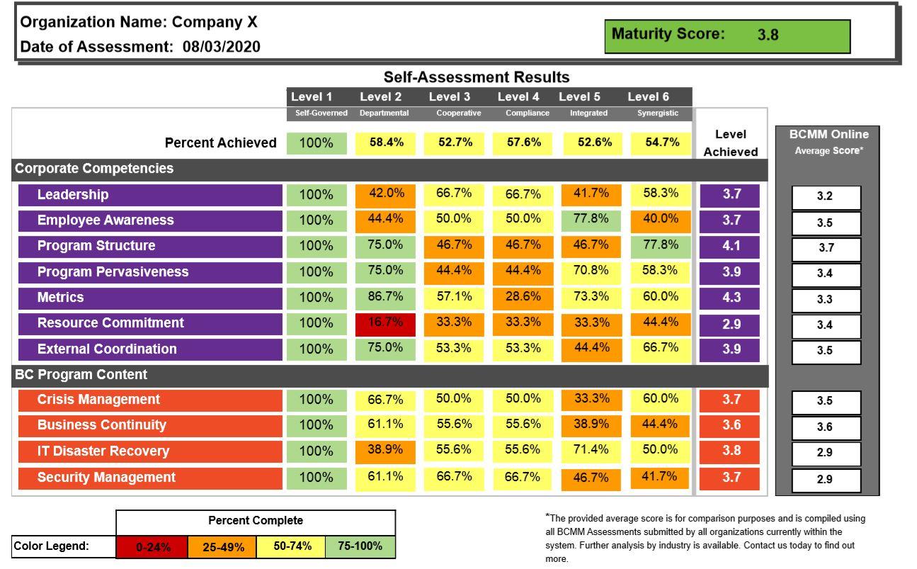 BCMM Company X Self Assessment